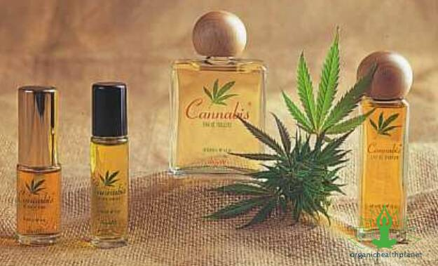 Cannabis-Essential-Oil
