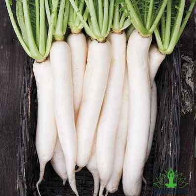9 Advantages of Daikon