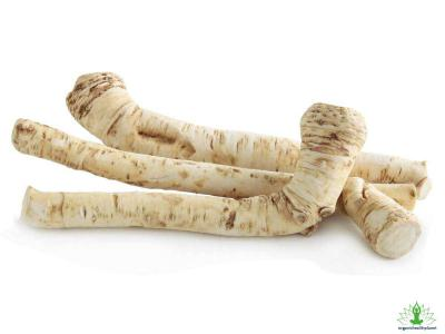 8 Amazing Horseradish Benefits