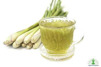 7 Health Benefits of Lemongrass Tea