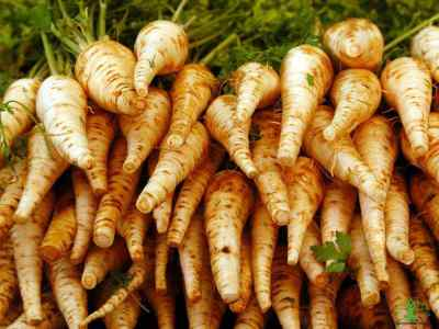 6 Amazing Benefits of Parsnips