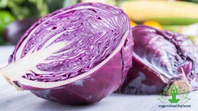 8 Surprising Facts about Red Cabbage