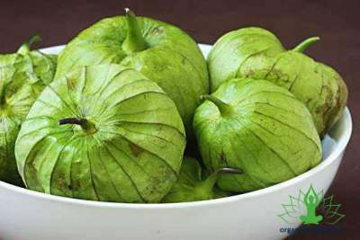 7 Advantages of Tomatillos